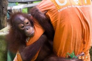 Borneo Day 2-11
